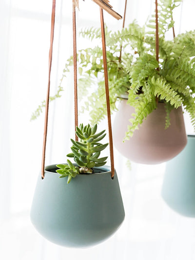Continental Hanging Pots - ThepotplantCo
