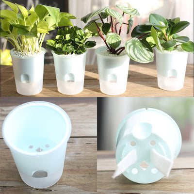 Clear White Minimal Self Watering Pot