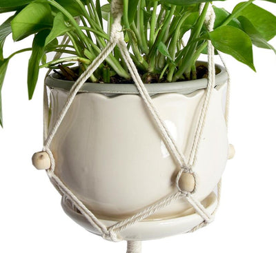 High Detail Macrame Plant Hangers