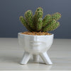 Small White Ceramic Planter Pot | ThepotplantCo