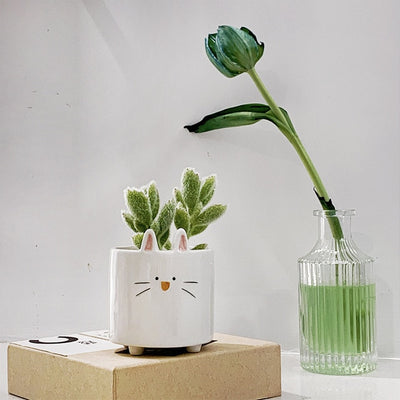 Succulents Flower Pot Ceramic Small Animal Flower pot  Mini Garden Plant Pot Home Decoration Planter Plant Flower Pot