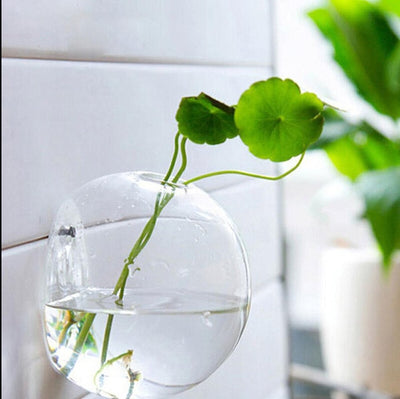 Contemporary Wall Mounted Propagation Vase