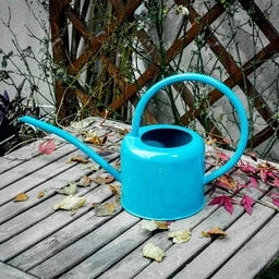 Retro Metal Watering Can - ThepotplantCo