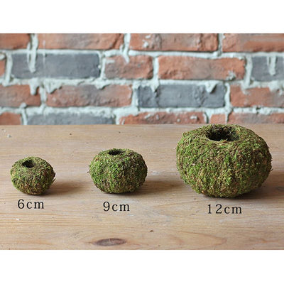 Natural Moss Ball Pot - ThepotplantCo
