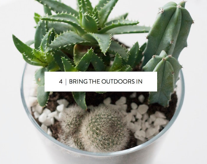 bring the outdoors in // plants
