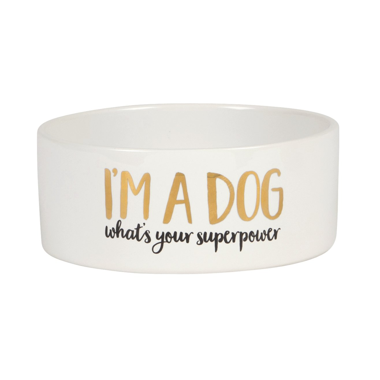 Dog Superpower Bowl - Wild Atlantic Living