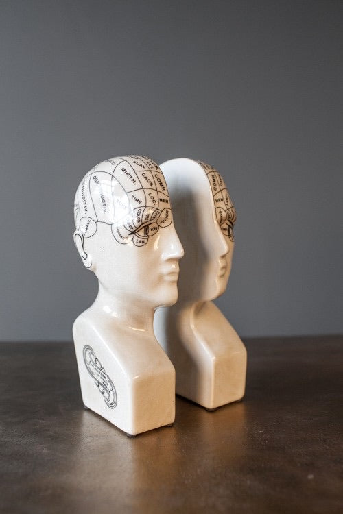 Antique Ceramic Phrenology Head Bookends / Ornaments - Wild Atlantic Living