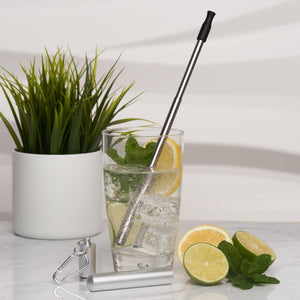 Silver Stainless steel travel straw - Wild Atlantic Living