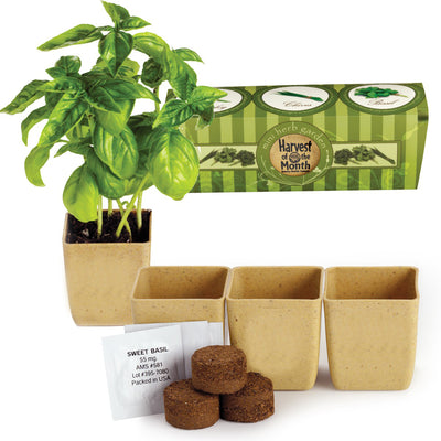 GrowPot DIY Herb Garden Kit - Waste Not Dots
