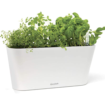 Window Garden Aquaphoric Herb Garden Tub - Self Watering Planter - Waste Not Dots
