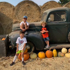 owners sons in a pumpkin patch
