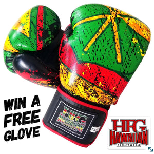 "HFG "" FREE GIVEAWAY"" BOXING GLOVES"