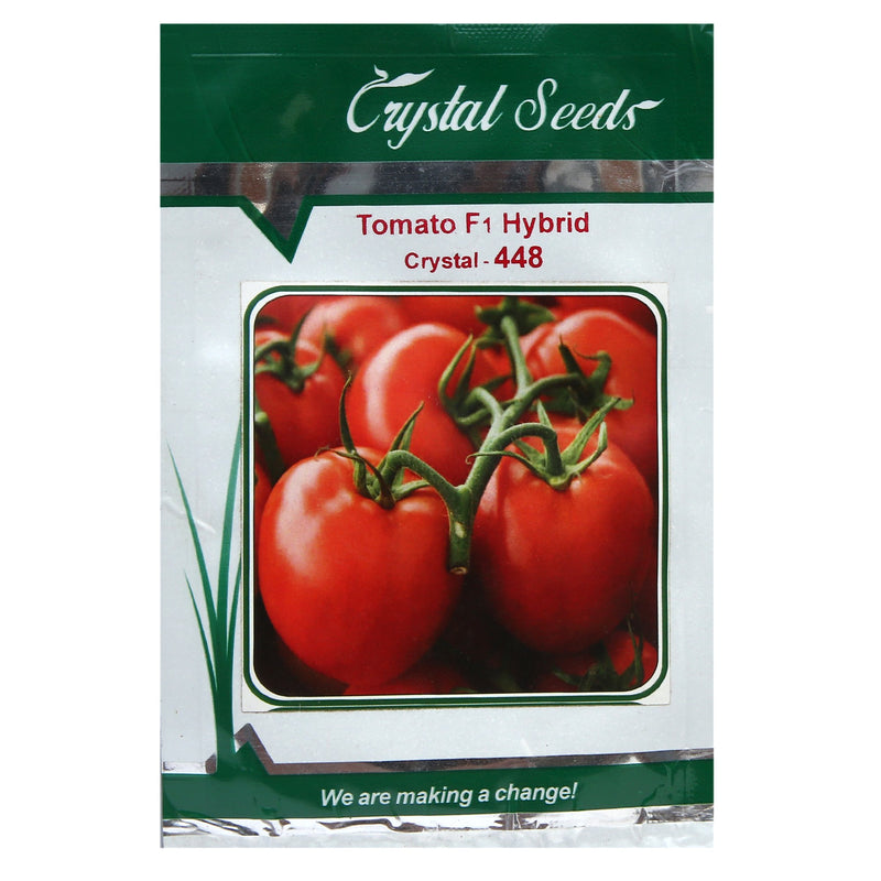 Buy Tomato CCS-448 Online - Agritell.com