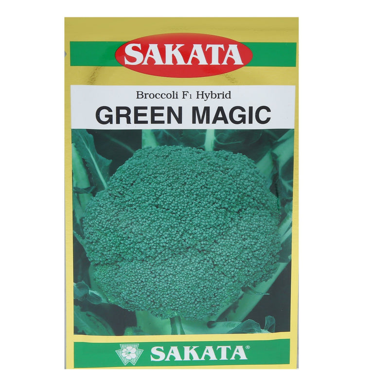Buy Sakata Broccoli Seeds Green Magic Online - Agritell.com
