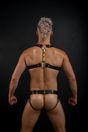 Load image into Gallery viewer, Body Harness  | Leather Horsebit Harness