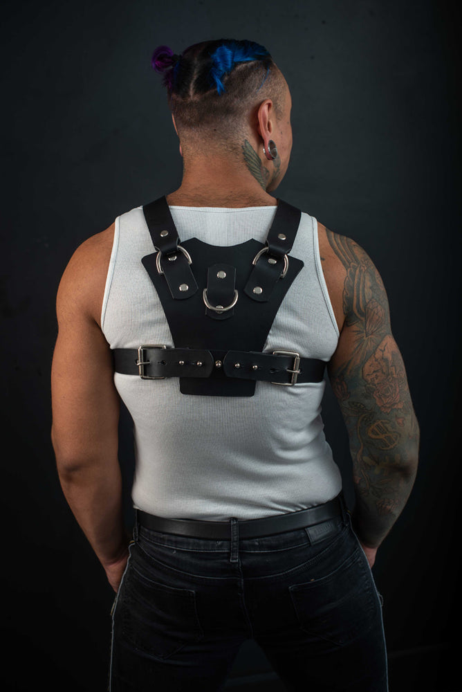 Load image into Gallery viewer, Rocco | Leather Harness