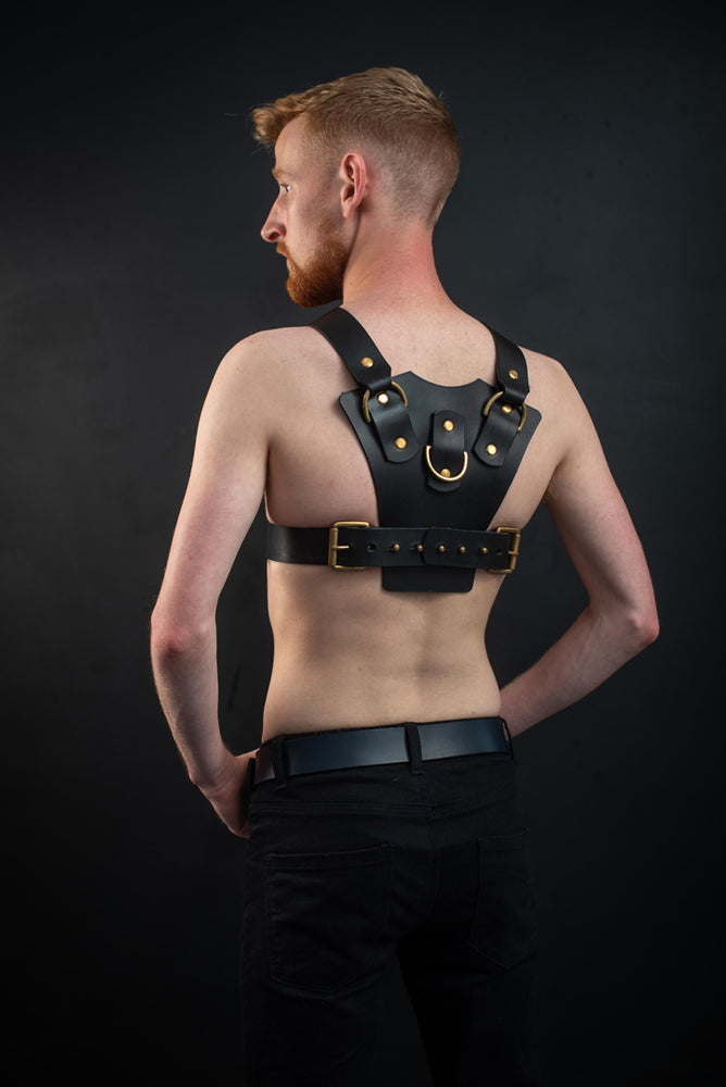 Load image into Gallery viewer, Logan | Leather Harness