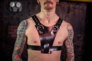 Load image into Gallery viewer, Rocco | Rubber Harness
