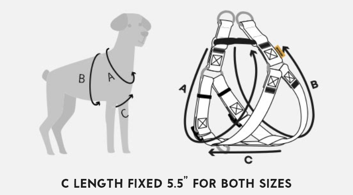 how to measure dog harness chest size