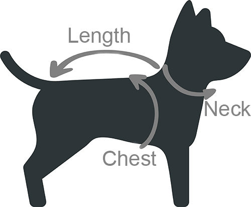 how to measure dog size