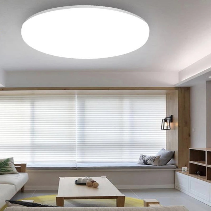 Roswell LED Ceiling Light