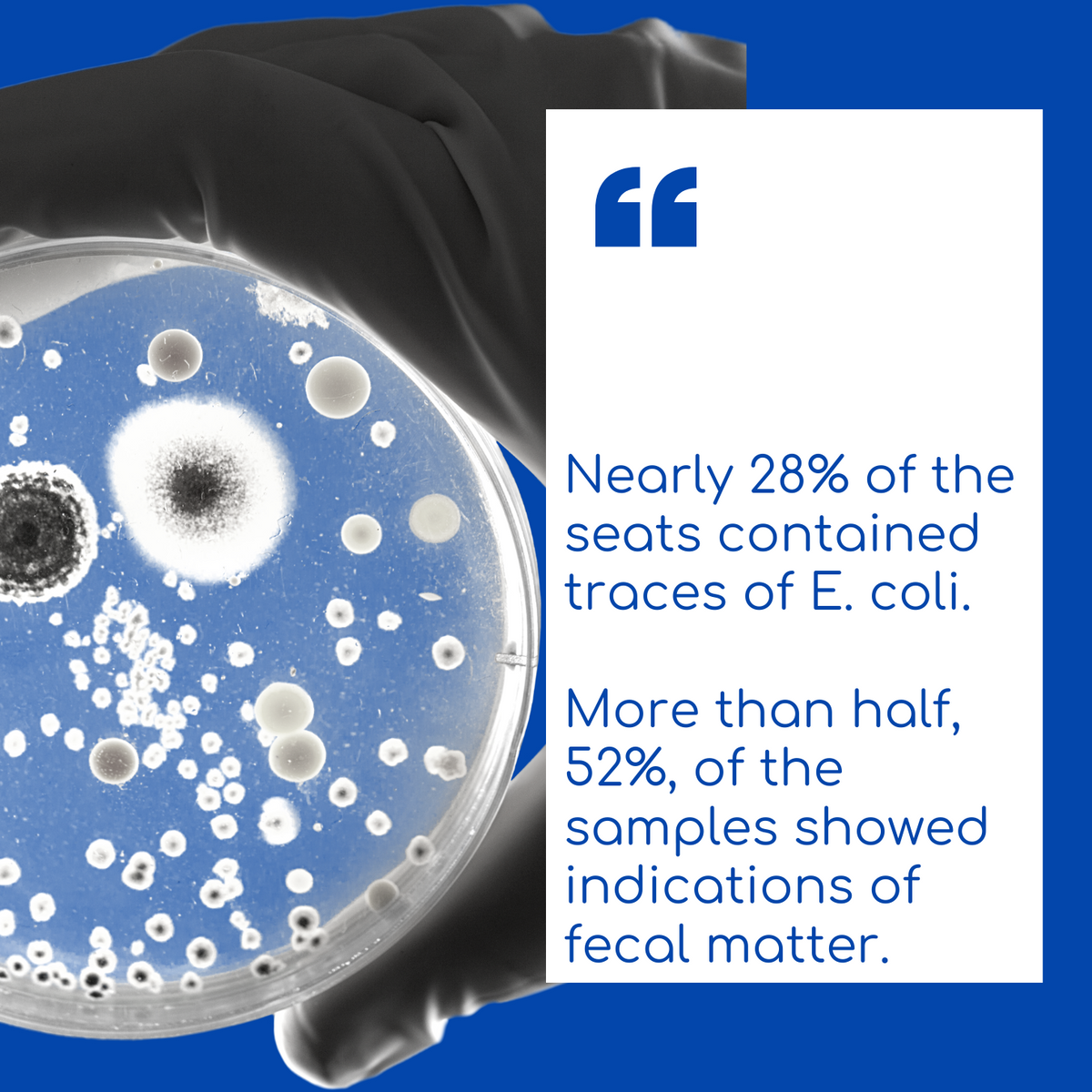 Nearly 28 percent of the seats contained traces of E. coli. More than half, 52 percent, of the samples showed indications of fecal matter.