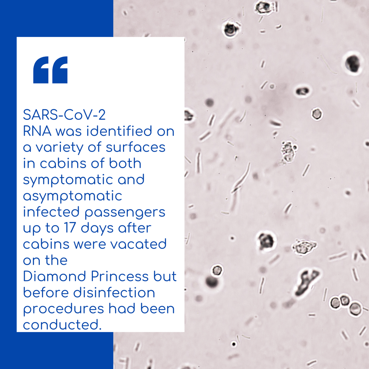 SARS-CoV-2 RNA was identified on a variety of surfaces in cabins of both symptomatic and asymptomatic infected passengers up to 17 days after cabins were vacated on the Diamond Princess but before disinfection procedures had been conducted.