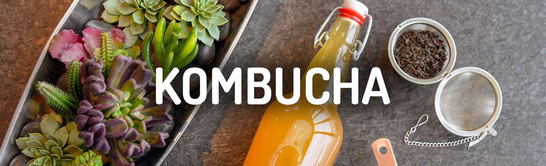 Kombucha How To