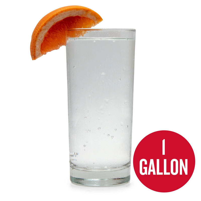 Grapefruit Hard Seltzer 1 Gallon Recipe Kit