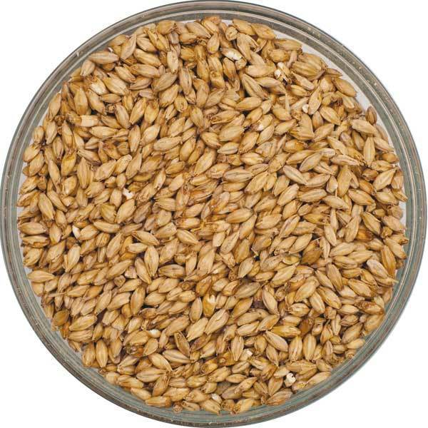 maltwerks pale ale malt grains barley for homebrewing