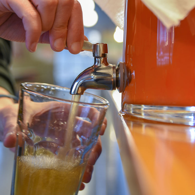 The glass fermentor pouring kombucha into a glass