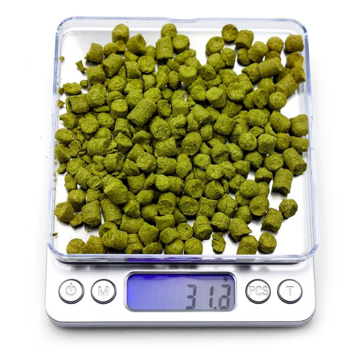 Northern Brewer Brewing scale with 31.2 grams of hops