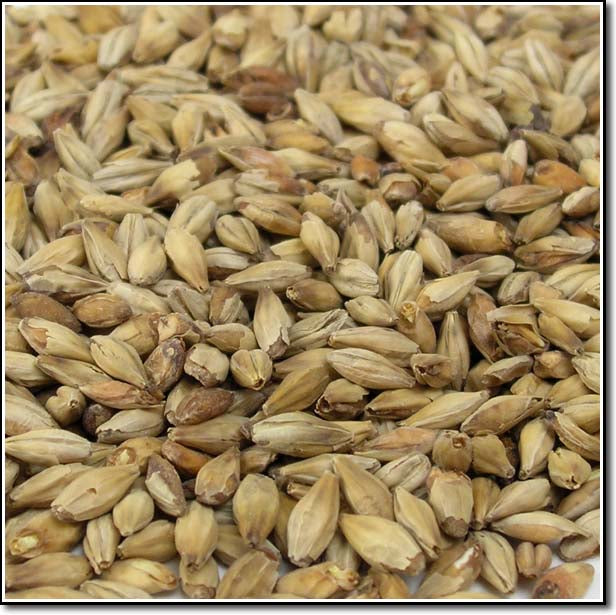 Detail-view of Briess Aromatic Malt