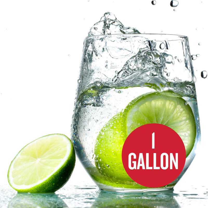 "Lime Hard Seltzer in a glass with cut limes and a red circle containing the text ""1-gallon"""