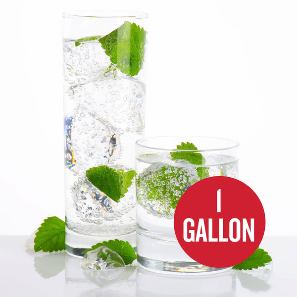 "Mojito Hard Seltzer in two drinking glasses, with ""1-gallon"" written within a red circle"