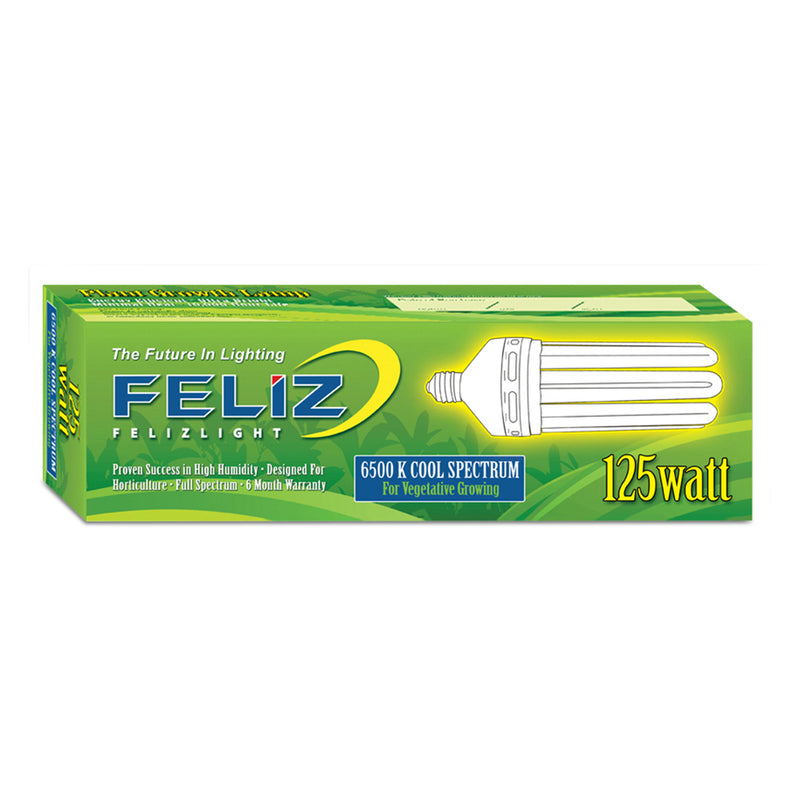 Box for the Feliz Compact Fluorescent 125 watt bulb