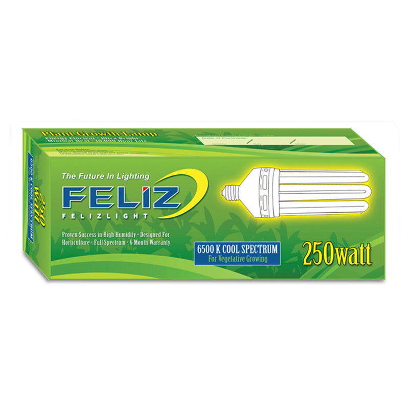 The Feliz Compact Fluorescent 250 Watt box