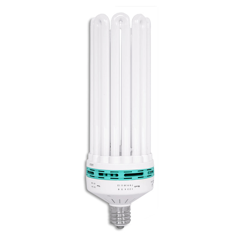 The Feliz Compact Fluorescent 250 Watt bulb