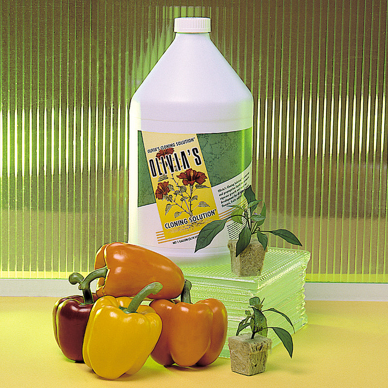 1-gallon jug of Olivia's cloning solution beside bell peppers and saplings