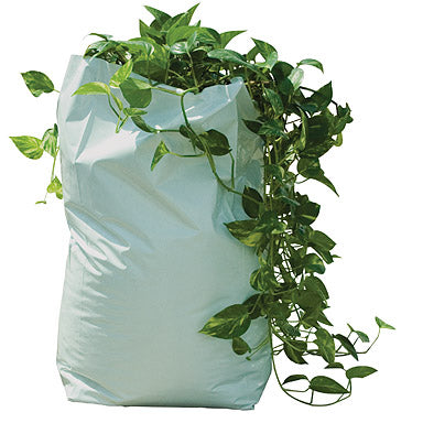 Poly Grow Bag filled with a plant