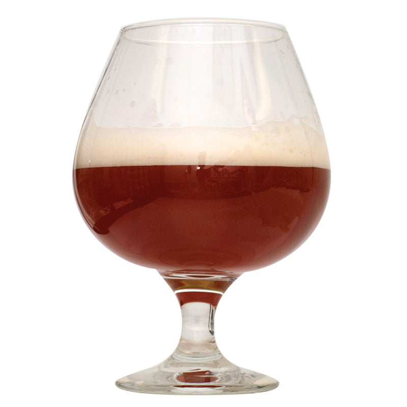 A stout glass of Barley Wine homebrew