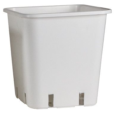 "White Square Plastic Pots  9"" x  9""- 10 count"
