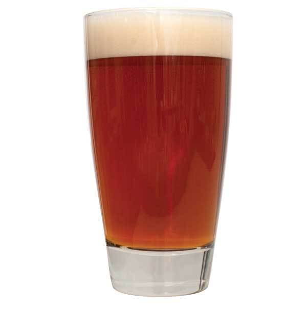 A tall glass of Block Party Amber Ale homebrew in a glass