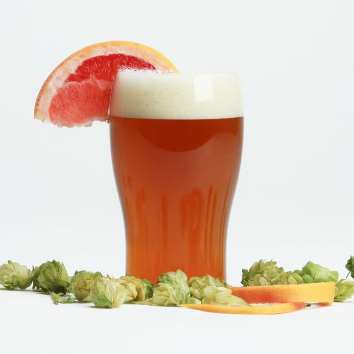Fresh Squished IPA homebrew in a glass with a grapefruit wedge and hop cones