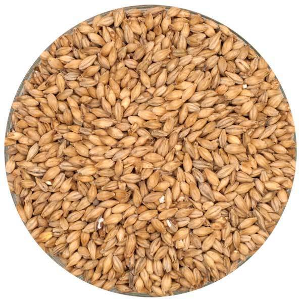 maltwerks pilsner barley malt american grains for homebrewing