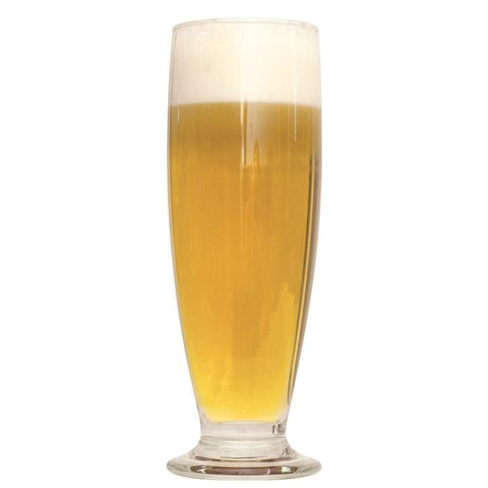 Brut DryPA homebrew in a glass