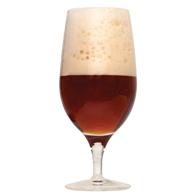Spiced Winter Ale in a drinking glass