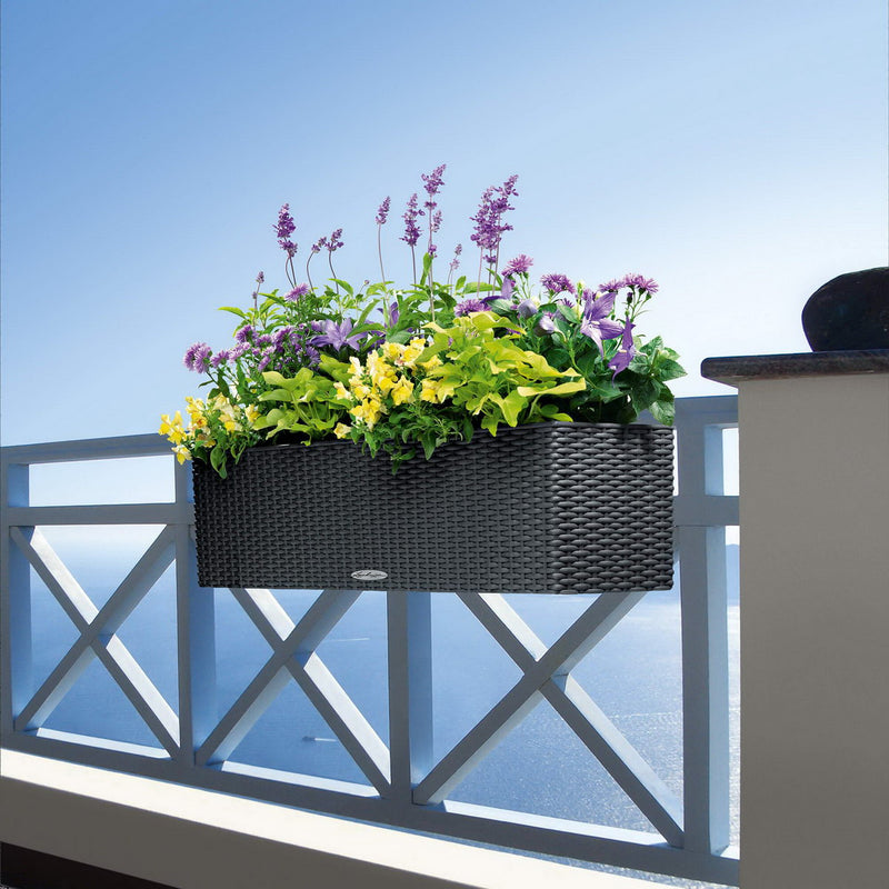 LECHUZA BALCONERA Cottage 80 Poly Resin Window Box Self-watering Planter with Substrate H19 L80 W19 cm