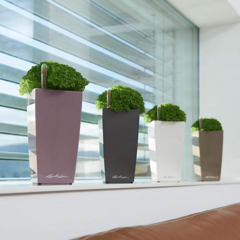 LECHUZA MINI CUBI Table High Gloss Poly Resin Table Self-watering Planter with Substrate H18 L9 W9 cm