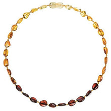 "Load image into Gallery viewer, Powell's Owl's Amber Teething Necklace 12.5"" - Beans Polished Rainbow"